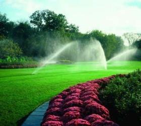 irrigation-system-300x250